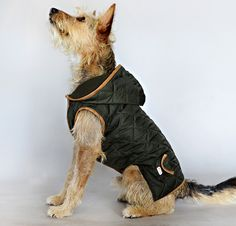 Jack Parka Rainy Days, Casual Wear, Parka, Snug, Comfy, Dogs, How To Wear, Casual Outfits, Casual Clothes