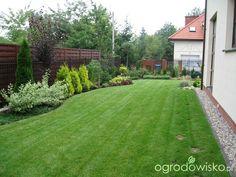 Z czym posadzić tuje 'Smaragd' - Forum ogrodnicze - Ogrodowisko