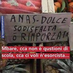 #gentisenzalibbra #cenmanicomiu #cataniagram #siciliani #sicilia #instasicily #instacatania #sicily