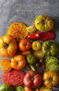 Check out our favorite heirloom tomato varieties: http://www.bhg.com/gardening/vegetable/vegetables/top-heirloom-tomato-varieties/?socsrc=bhgpin043014heirloomtomatoes