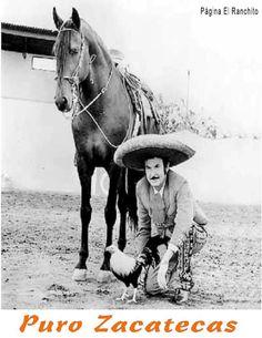 Jalpa Zacatecas