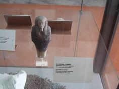 Naples Museum, Peter Wood, Pompeii Ruins, Marble Bust, World Cruise, Alexander The Great, Ancient Rome, Roman Empire, Egyptian