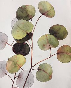Beautiful artwork 💫💛👏 🔺 by ~~~ Feel free to be inspired of art with 😌 Watercolor Plants, Watercolor Leaves, Abstract Watercolor, Watercolor And Ink, Watercolor Paintings, Watercolors, Plant Illustration, Watercolor Illustration, Plant Art