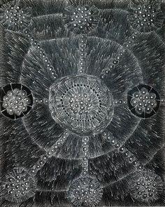 Hilda Rogers Nakamarra ~ Lukarrara Jukurrpa (Desert Fringe-rush Seed Dreaming)