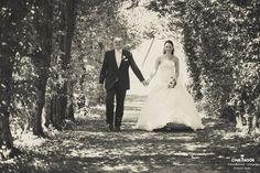 """""""Das Bild ist bei einer Hochzeit im August entstanden. Mir hat das Lichtspiel in dieser kleinen Allee gefallen als das Brautpaar auf dem Weg zum Altar war. Eigentlich war es ein Schnappschuss, der wie ich finde auch so durchgeht!""""  © Martin Hecht"""