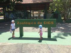 Fazer um passeio no Zoológico do Cigs é bem tradicional, com certeza entra no roteiro de todos os turistas, mas não só para eles, mas também para quem mora aqui é muito legal levar as crianças para passar uma tarde por lá.