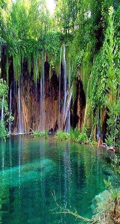 Parque Nacional de Garajonay la Gomera Spain looks like fern grato on kauai Tenerife, Beautiful Waterfalls, Beautiful Landscapes, Natural Waterfalls, Places To Travel, Places To See, Places Around The World, Around The Worlds, Beautiful World