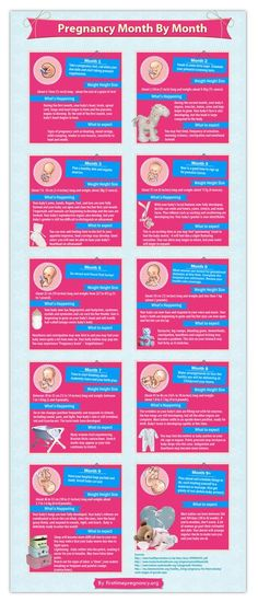 Pregnancy Month By Month Infographic - this handy guide can help you plan your journey through pregnancy