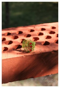 lime green ring with strawberry red Swarovski beads. €8.00, via Etsy.