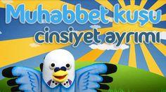 Muhabbet kuşu cinsiyet ayrımı - Muhabbetkusum.com