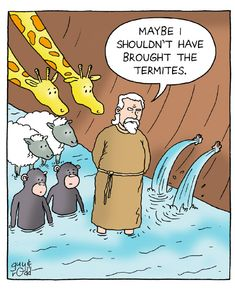 Funny Bible Genesis Noah's Ark Cartoon Joke - Man brings box of termites to Noah's ark - Really Jim? Description from irreligious.org. I searched for this on bing.com/images