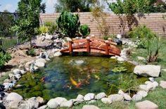Very nice koi pond with a 8ft short post bridge.