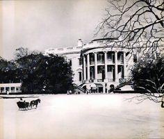 White House Christmas Card     (1962) Mrs. Kennedy and the children being pulled across the grounds in a sleigh by Caroline's pony Macaroni.