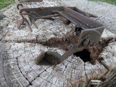 #Goodell APPLE #PEELER #Rustic #Country #Decor #Primitive Kitchen #Steampunk  #Vintage