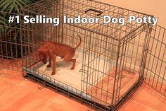 Indoor Dog Potty - #1 Selling Indoor Dog Potty - Indoor Dog House ...