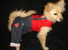 Custom made to size dog jumpsuit boy or by PinkPunkPuppyDesigns, $35.00