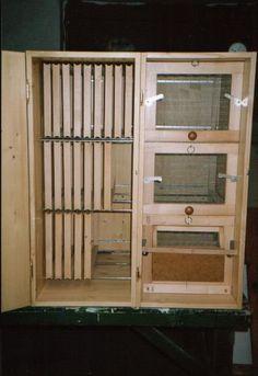 Interior of Carniolan Bee Hives