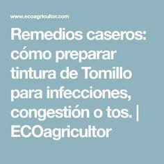 Remedios caseros: cómo preparar tintura de Tomillo para infecciones, congestión o tos. | ECOagricultor
