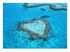 La barriera corallina Australiana....