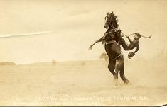 Vintage Cowboy Photo - Kit McCrorey on Tropper, Belle Fourche, SD