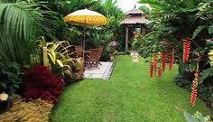 Nice tropical yard
