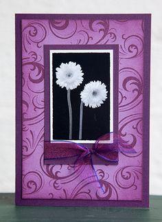 Card by Rachel Greig using Darkroom Door Swirls Background Stamp and Viva La Flora Montage image. http://www.darkroomdoor.com/background-stamps/background-stamp-swirls