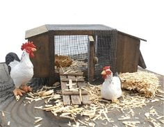 A chicken coop for the miniature gardening. Have a little egg instead...
