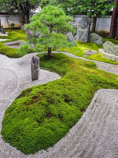 Best tips and tricks about organic gardening Zen Rock Garden, Zen Garden Design, Dry Garden, Garden Stones, Landscape Design, Japanese Garden Landscape, Small Japanese Garden, Japanese Garden Design, Modern Landscaping