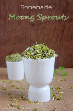 Preparing sprouts is again a weekly affair for me. I prepare sprouts twice a week as they are very healthy and rich in proteins. We pref. How To Make Sprouts, Fruit Dressing, Bean Sprout Recipes, Bean Sprouts, Rich In Protein, Kitchen Recipes, Diversity, Spreads, Food Food