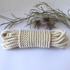 EdenEve Macrame is a homeware and craft store. We sell Macrame Wall Hangings, Plant hangers, and make custom pieces. We sell Macrame Rope and offer. Rope Basket, Cotton Rope, Plant Hanger, Craft Stores, Weaving, Crafty, Knitting, Window, Inspired