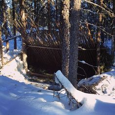 When you live in cottage country, this becomes your vacation home ha ha #bushcraft #boreal #borealforest #bushcrafting #bushcraftcanada #bushwhacking #camping #crownland #discoverON #forest #thegreatoutdoors #hiking #leanto #naturalshelter #primitiveliving #bushcraftshelter #northernontario #sharecg #survival #survivalist #selfreliance #wildcamping #wintercamping #wildernesssurvival #yourstodiscover #wintersurvival #forestshelter #parkscanadashop #ontarioparks