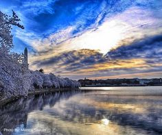 Photo by: Monica Sawyer Washington, DC Photographer  Tidal Basin in Spring  BuyersAgent.com VA, MD, DC  Buyer's Edge Realtors