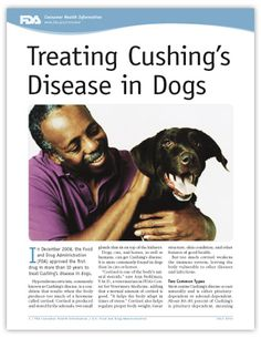 Treating Dogs Naturally For Cushings