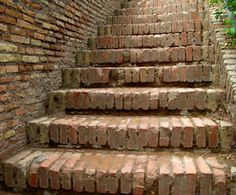 How to remove black mold from brick steps