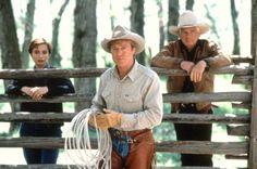 The Horse Whisperer Beau Film, Love Movie, I Movie, Robert Redford Movies, The Horse Whisperer, Somewhere In Time, Katherine Heigl, Pierce Brosnan, Film Director