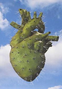 Cactus Heart #anatomy art