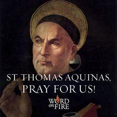 To one who has faith, no explanation is necessary. To one without faith, no explanation is possible - St. Thomas Aquinas  #Catholic #Pray #DoctoroftheChurch