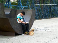Leyendo en buena compañía. / Reading in good company.