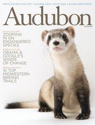 May-June 2009 Audubon magazine