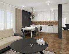 Salon a aneksem kuchennym i jadalnią