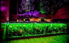 """""""Discoteca Greenhouse em Nova Iorque, amiga do ambiente"""""""