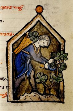 https://flic.kr/p/aiTGyL | Man with Sickle. detail. Flemish 13th cent. Psalter with Calendar. bodl_Douce49