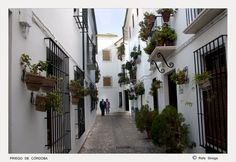 "34. ""Andalucía en Fitur"": Barrio de la Villa de Priego de Córdoba (Córdoba), by @RSinoga"