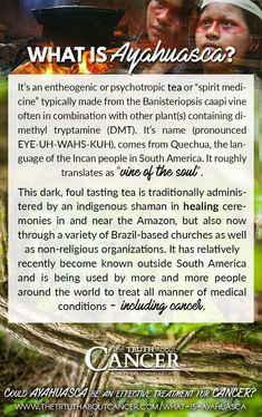 "It's an entheogenic or psychotropic tea or ""spirit medicine"" typically made from the Banisteriopsis caapi vine often in combination with other plant(s) containing Natural Cancer Cures, Natural Cures, Natural Healing, Enlargement Pills, Cancer Fighting Foods, Holistic Healing, Ayurvedic Healing, Cancer Treatment, Natural Treatments"