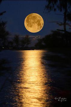 Worm Moon Rising - Randleman Lake - North Carolina - USA