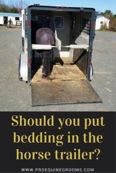 Should you be putting bedding or shavings in your horse trailer? Lots of factors to consider - the horse trailer floor, dust, ventilation, and more.