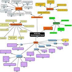 10 ideas para hacer una wiki en el ámbito científico-matemático.