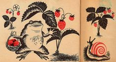 Frog & Snail    This illustration comes from a little book called 'Where have you been?' by Margaret Brown. Published in 1952 by Scholastic in the USA. The pictures are by Barbara Cooney