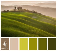 Rolling Hills: Green, Fern, Sage, Lime, Beige, Stone, Coffee, Brown - Colour Inspiration pallet