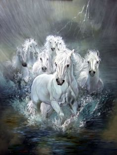 You too can be an artist when you paint with Diamonds! Every kit gives you a chance to create a work of art you can be proud of. This diamond painting kit Most Beautiful Horses, Pretty Horses, Seven Horses Painting, White Horse Painting, Cavalo Wallpaper, Horse Wallpaper, Watercolor Horse, Litho Print, Horse Artwork
